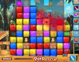 pet-rescue-598