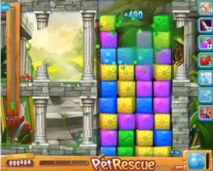 pet rescue level 583