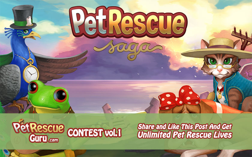 PetRescuGuru Contest Vol. 1