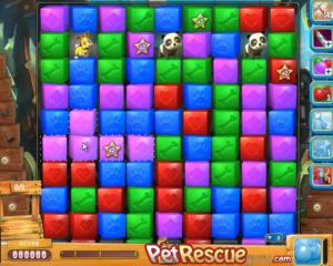 pet-rescue-600
