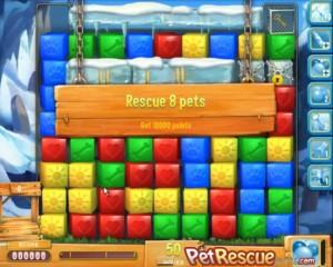 pet-rescue-658