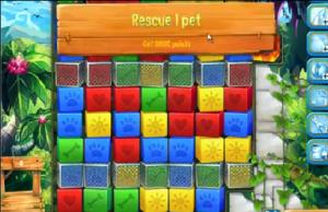 pet rescue 707